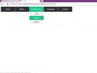 Create a Dropdown Menu using HTML & CSS